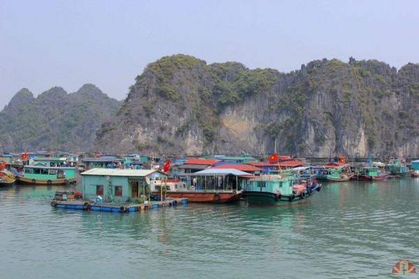 Jour 25: HALONG TERRESTRE – HAI PHONG – ILE CAT BA