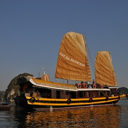Authentic cruise in private junk in Halong
