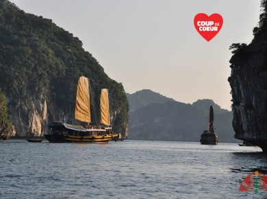 Private cruise in Cat Ba in our traditional junk